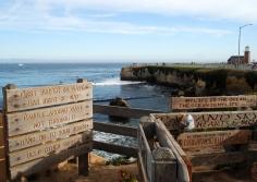 surfing rules santa cruz