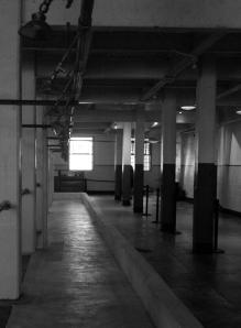Alcatraz (20)