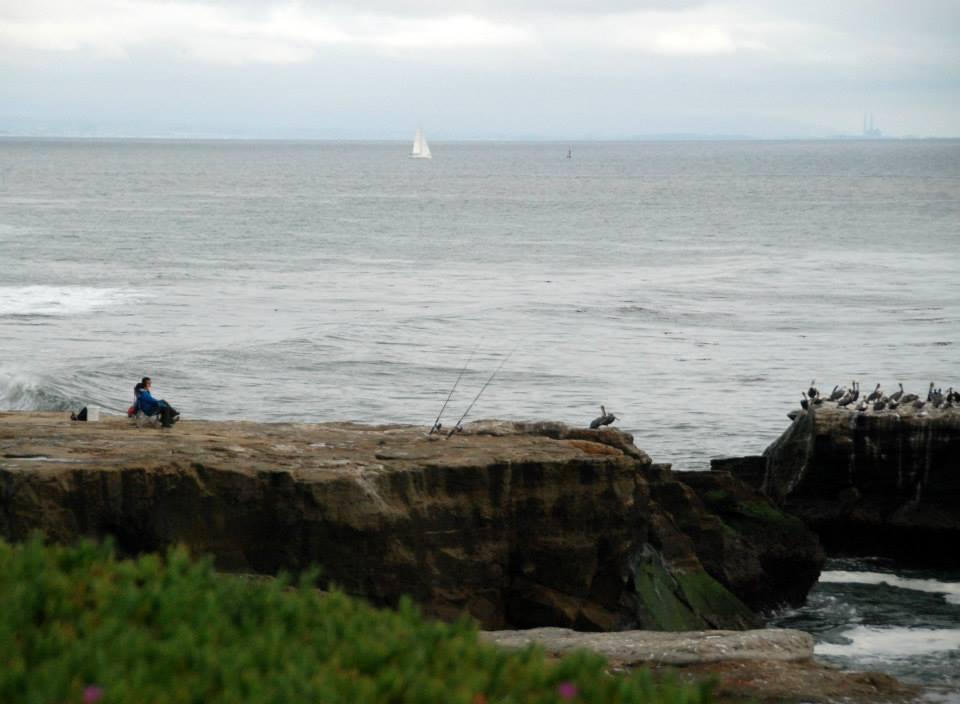The best 1 hour walk in santa cruz shore looks nice for Santa cruz fishing spots