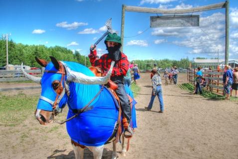 Tiny Tots bemidji horse show