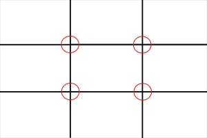 MOC Zuckerman on Composition Rule of Thirds 1-1