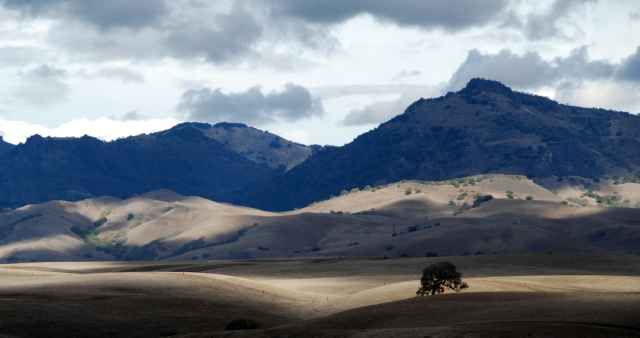 The Hills of Hollister, CA are a great place for an RV Adventure