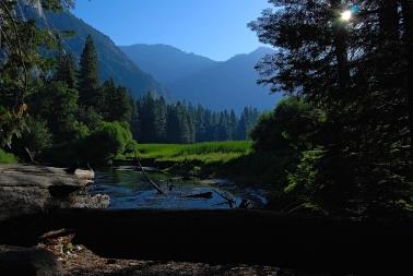 Yosemite (33).jpg