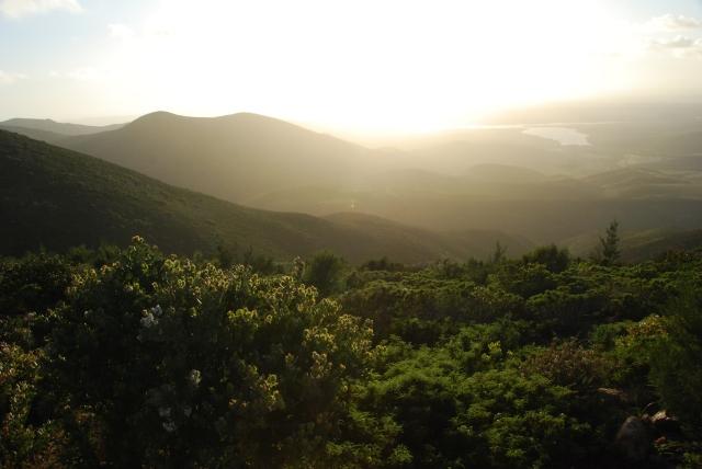 Otay Mountain (67)