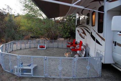 these-dog-gates-are-incredible-for-being-able-to-bring-your-dogs-camping-but-not-always-have-to-walk-them