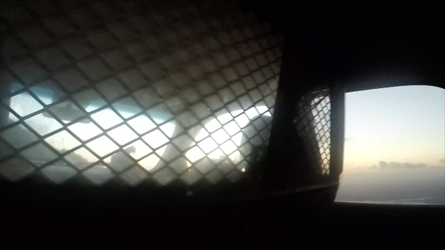 Border Patrol Vid