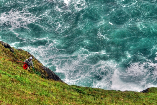Cape Foulweather (9)