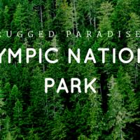 Rugged Paradise - Olympic National Park