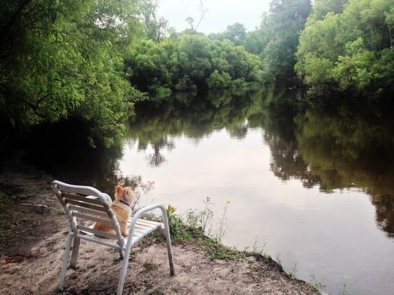 Peace River (3)