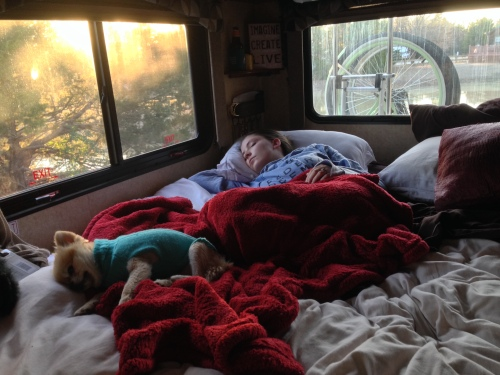 Tech Tip Tuesday, if you add a 4 inch thick memory foam mattress pad to your RV mattress you will never want to get out of bed. Even dogs like it.