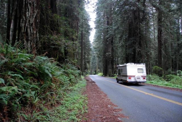 Redwood Highway (23)