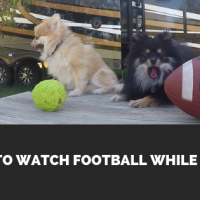 How To Watch Football In An RV