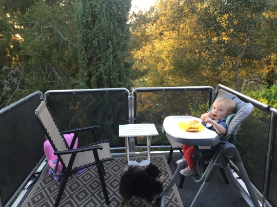 On the Deck