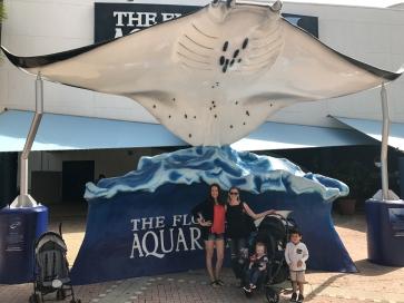 Tampa Aquarium (2)